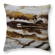Mysterious Wings Throw Pillow