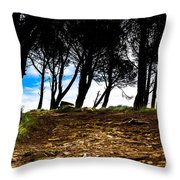 Mystery Of The Forest Throw Pillow