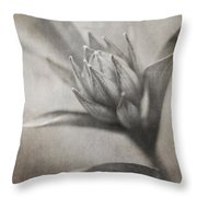 Mystic Anticipation Throw Pillow