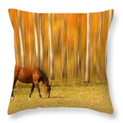Mystic Autumn Grazing Horse Throw Pillow