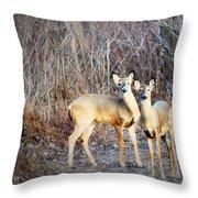 Mystic Duo Throw Pillow