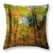 Mystic Fall Throw Pillow