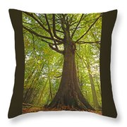 Mystical Forest Tree Throw Pillow