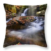 Mystical Pool Throw Pillow by Debra and Dave Vanderlaan