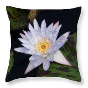 Mystical White... Throw Pillow