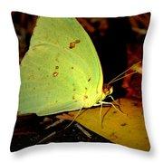 Mystical World 2 Throw Pillow