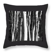 Mystick Throw Pillow