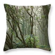 Mythical Place Throw Pillow