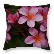 Na Lei Pua Melia O Wailua - Pink Tropical Plumeria Hawaii Throw Pillow