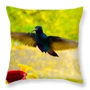 Na Na Na Na Na Na Throw Pillow by Al Bourassa