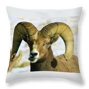 Na Na Nanny Poo Throw Pillow