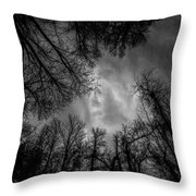 Naked Branches Throw Pillow