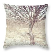 Naked Willow Tree. Winter Poems Throw Pillow