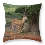 Nanger Granti... Throw Pillow