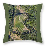 Napa Valley From Above Throw Pillow