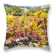 Napa Valleys Best Throw Pillow