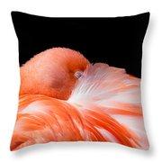 Napping Flamingo Throw Pillow
