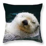 Napping On The Water Throw Pillow