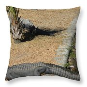 Naptime Throw Pillow