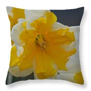 Narcissus 014-1 Throw Pillow