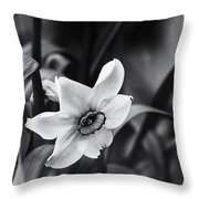 Narcissus In The Shadows Throw Pillow
