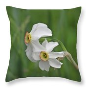 Narcissus Pair Throw Pillow