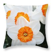 Narcissus Parkdene #2 Throw Pillow