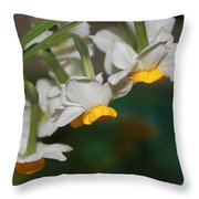 Narcissus Profile Throw Pillow