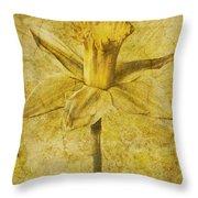 Narcissus Pseudonarcissus Throw Pillow