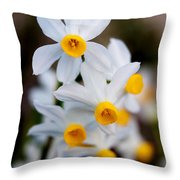 Narcissus Tazetta Throw Pillow