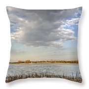 Narew River Near Serock In The Vicinity Of Warsaw Throw Pillow