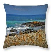 Narragansett Rocky Shore Throw Pillow
