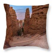 Narrow Passage 1 Throw Pillow