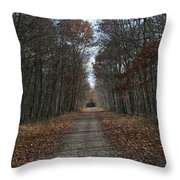 Narrow Path On Recovery Road Throw Pillow