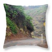 Narrow Road - North Maui Throw Pillow