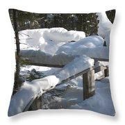 Narrow Trail Throw Pillow