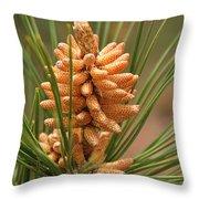 Nascent Pinecone Throw Pillow