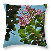 Nashville Flowers Throw Pillow