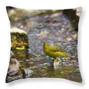 Nashville Warbler Throw Pillow