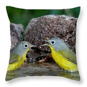 Nashville Warblers Vermivora Ruficapilla Throw Pillow