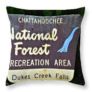 National Forest Recreation Area Throw Pillow