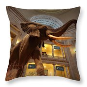 National Museum Of Natural History Throw Pillow
