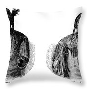 Native Americans: Sign Language Throw Pillow