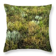Native Grasses Throw Pillow