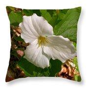 Native Trillium Throw Pillow