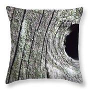 Natural Abstract 2 Throw Pillow