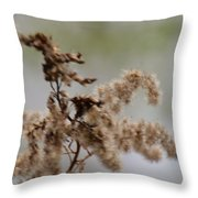 Natural Abstract 48 Throw Pillow