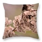 Natural Abstract 49 Throw Pillow
