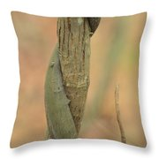 Natural Abstract 50 Throw Pillow