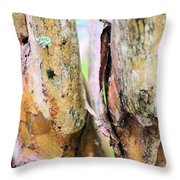 Natural Abstract Crepe Mertle Throw Pillow